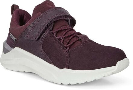 ECCO Intervene Sneaker, Fig