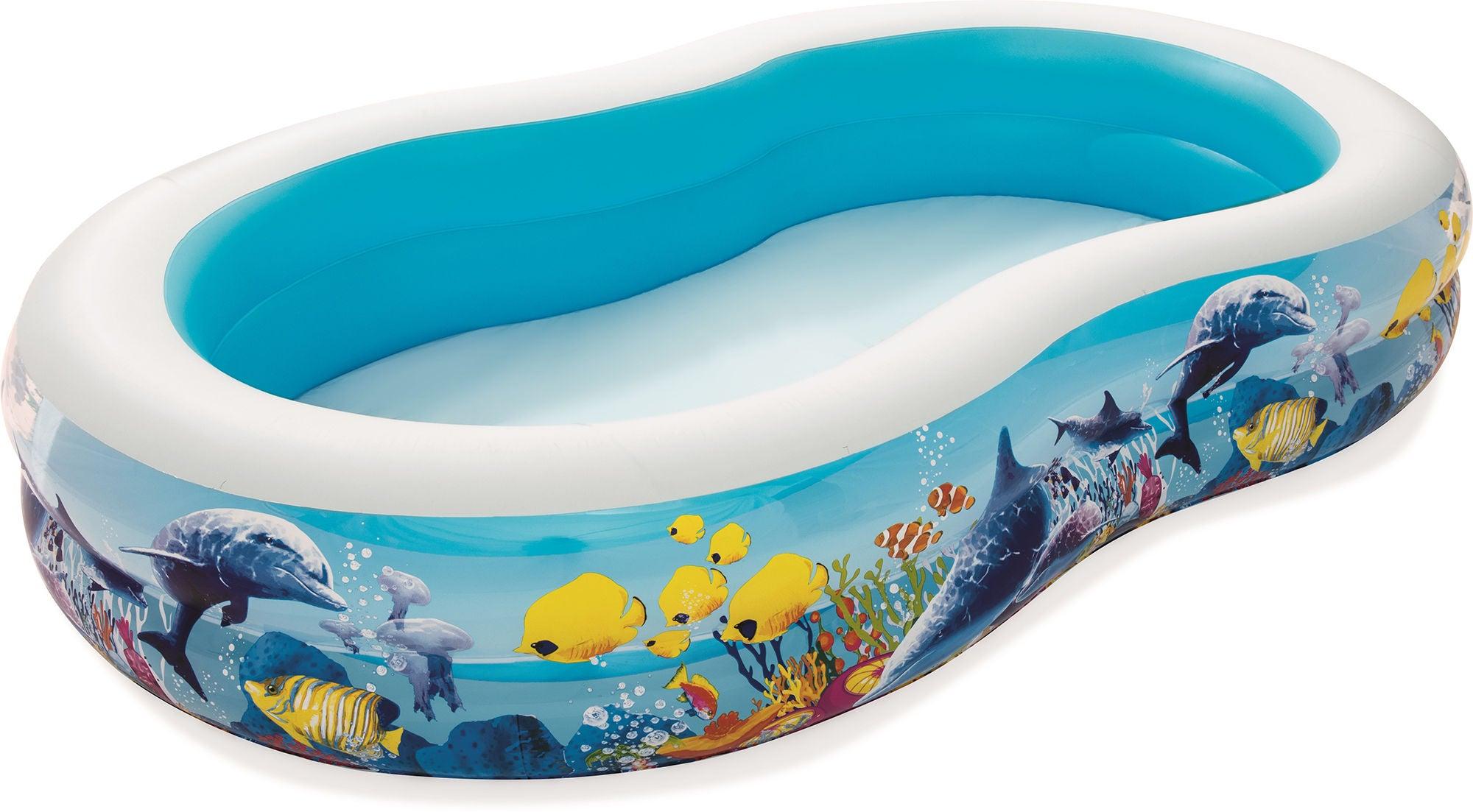 Bestway Pool 262x157 Clownfisk