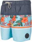 Rip Curl Volley Team Spirit Shorts, Multico