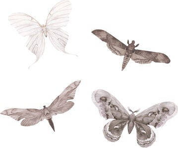 That's Mine Wallsticker Moths 4-pack