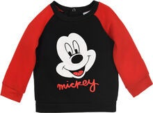 Tröjor från Disney Musse Pigg  680a79726eefc